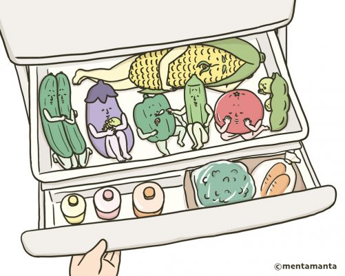 Vegetable compartment of the fridge in summer